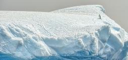 <h5>Antarctica_D4S6227</h5>