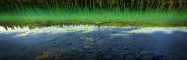 <h5>Jasper-National-park-D805903</h5>