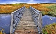<h5>L'Anse aux Meadows-Newfoundland</h5>