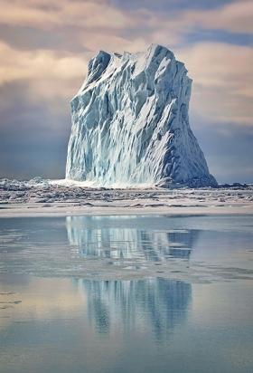 <h5>Arctic Bay Berg D4S4311</h5>