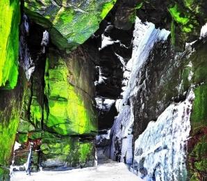 <h5>Bird-Cave-VII2791</h5>