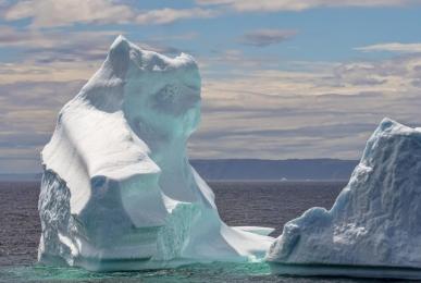 <h5>Iceberg-5000138</h5>