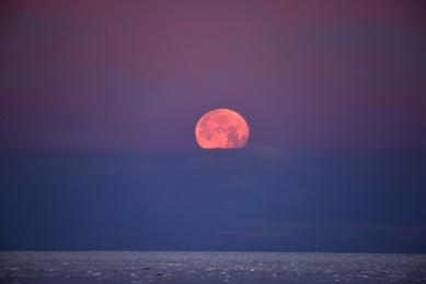 <h5>Moon-setting-D821574</h5>