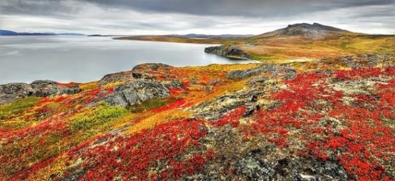 <h5>Northwest-Passage-5106-Fall-scene</h5>