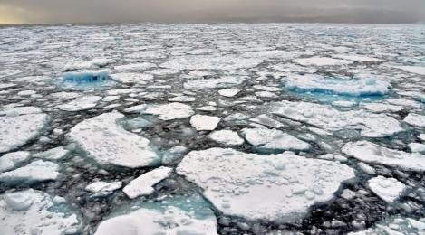 <h5>Northwest-Passage-Ice-D4S1334</h5>