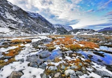 <h5>Seglek-Fjord-Labrador-5178B</h5>