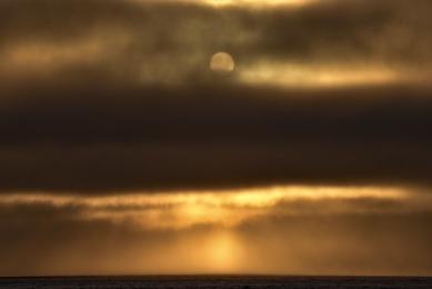 <h5>Sun-in-Cape-D821518</h5>