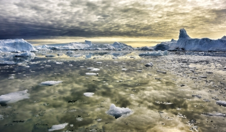 <h5>Ilulissat-Greenland-D814961</h5>