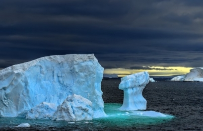 <h5>Antarctica_D4S7742</h5>