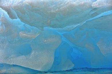 <h5>Antarctica_D4S8146-e1451960637255.jpg</h5>