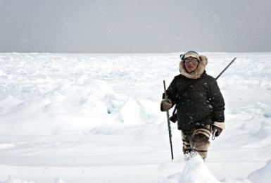 <h5>Igloolik-Nunavut-Hunter-V3X1184</h5>