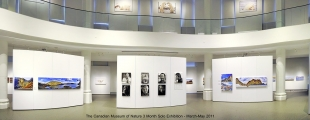 <h5>Museum of Nature Solo Exhibition in Ottawa</h5>