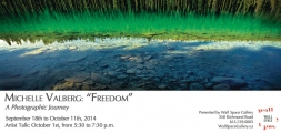 <h5>Freedom - Wall Space Gallery in Ottawa</h5>