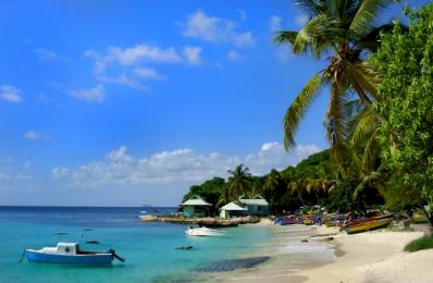 <h5>Caribbean DSC_3703 </h5>