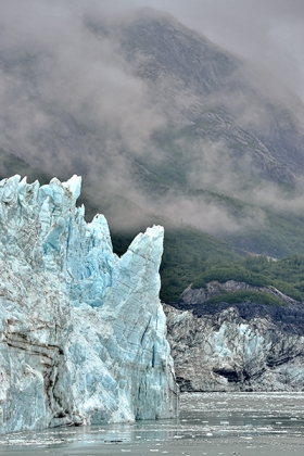 <h5>Glacier Bay D4S1732</h5>