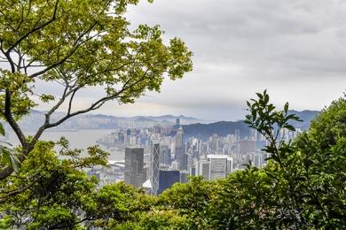 <h5>HONG KONG_D5S0600 </h5>