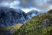 <h5>Great Bear Rainforest D858045</h5>