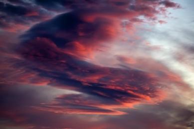 <h5>Arctic Night Sky_D812747 </h5>