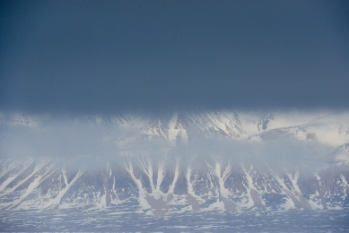 <h5>Arctic Bay_D805260</h5>