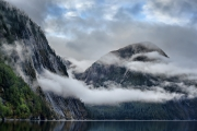 <h5>Great Bear Rainforest 2017 _D522640</h5>