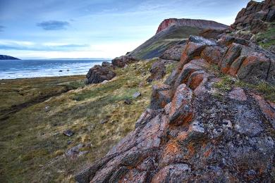 <h5>Arctic Bay _DSC3238</h5>