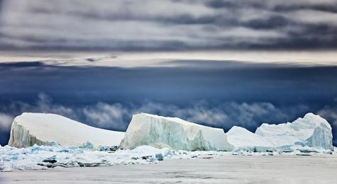 <h5>Iceberg _V3X1702</h5>