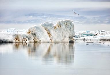 <h5>Arctic Bay Floe Edge V3X1997</h5>