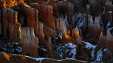 <h5>Bryce Canyon Utah_DZ73305 </h5>