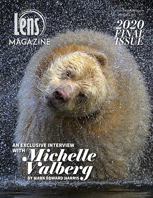 LENS Magazine spirit bear cover kermode bear great bear rainforest canada