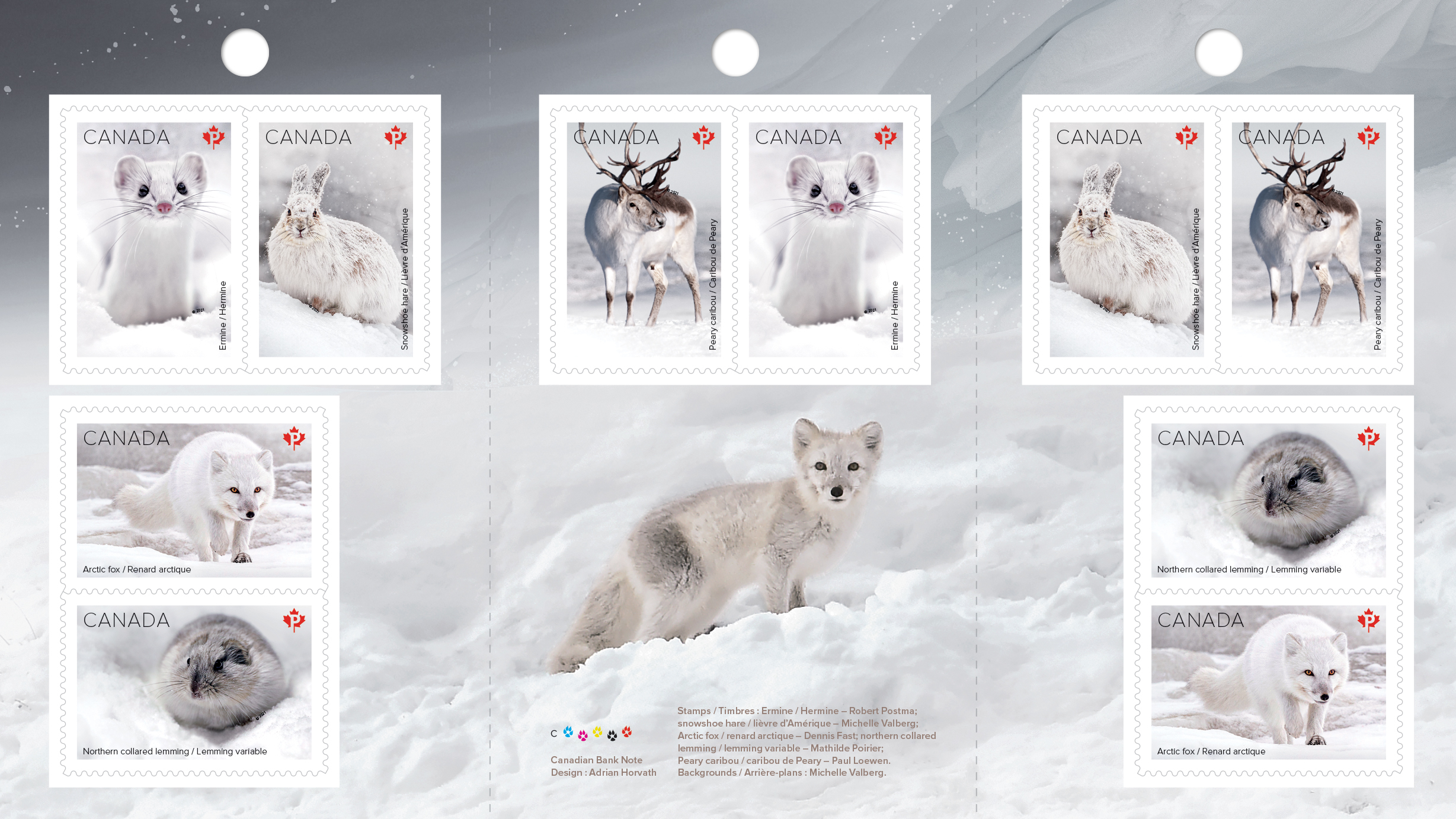 snowshoe hare and arctic fox on a canada post stamp collection snow mammals